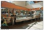 Il bar del Vigor Sporting Center di via Grotta di Gregna 100