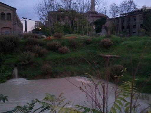 Piena, in XV Municipio arriva l'acqua dal sottosuolo