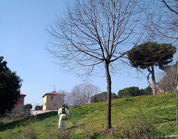 Garbatella: pulizia del parco Serafini