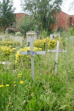 Cimiteri: Verano e Prima Porta nell'incuria