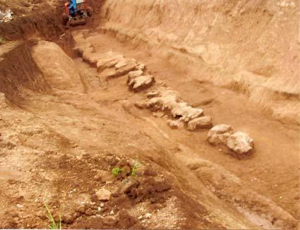 Cosa c'è sotto gli scavi archeologici nel Parco Tor Tre Teste?