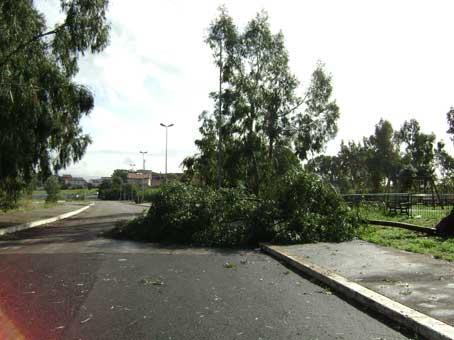 Tromba d'aria si abbatte sulla zona sud-est di Roma