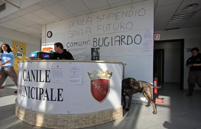 Muratella, occupato il canile comunale: a rischio oltre 119 posti di lavoro