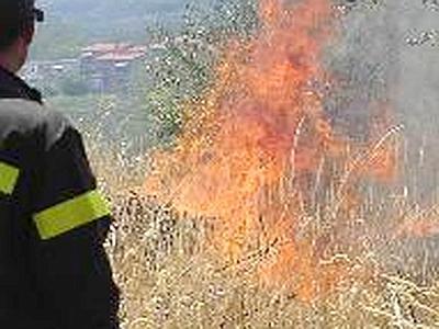 Incendio parco dell'Insugherata