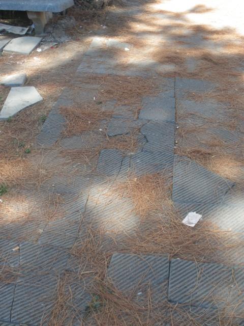 Degrado all'area verde di Largo Franchellucci