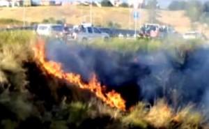 Incendio Parco del Pineto