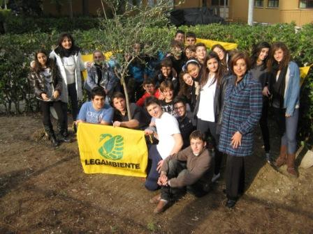Festa dell'Albero 2011, gli alunni della media Sinopoli piantano un Ulivo di Pace nel giardino della scuola