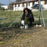 Paola e conigli al Casale dei Pozzi