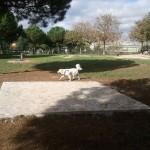 Area cani Torrevecchia