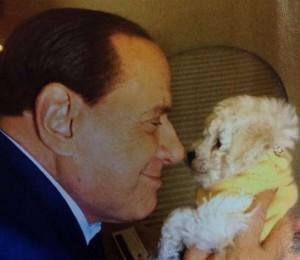 Silvio Berlusconi e il cane Dudù